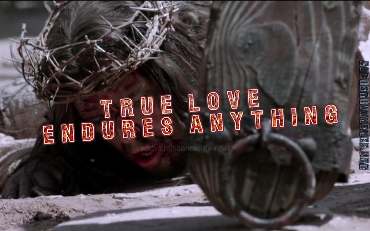 True Love Endures Anything